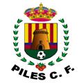 Piles CF